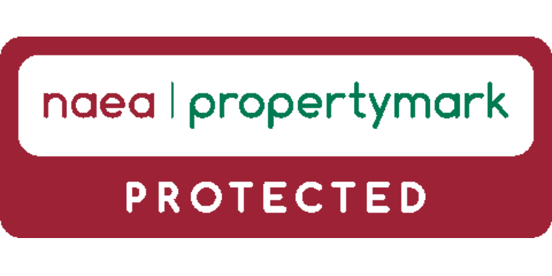 National Association of Estate Agents Website Logo